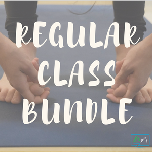 Regular Class Bundle