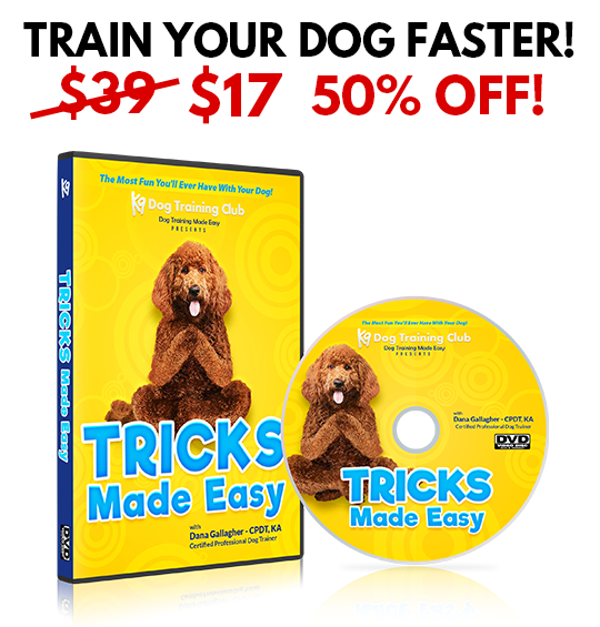 Dog Tricks Made Easy DVD - BUNDLE DISCOUNT