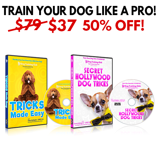 Tricks Made Easy + Hollywood Dog Tricks - BUNDLE DISCOUNT