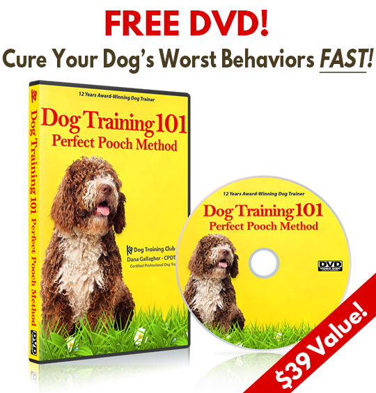 Perfect Pooch Dog Training Method DVD - FREE!