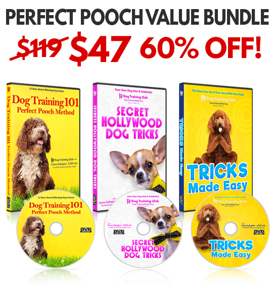 Perfect Pooch Dog Training VALUE BUNDLE  - 60% OFF!