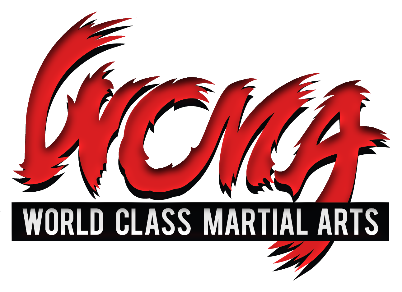 World Class Martial Arts