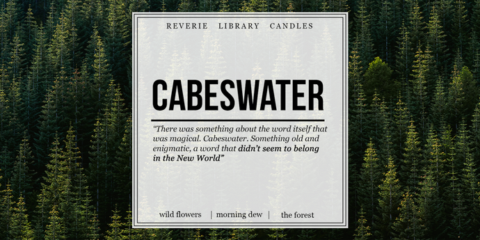 Cabeswater ~ The Raven Cycle ~ Soy Candle for Bibliophiles