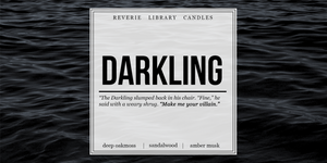 Darkling ~ Shadow and Bone ~ Soy Candle for Bibliophiles