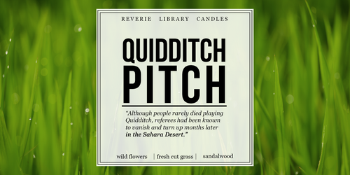 Quidditch Pitch ~ Harry Potter ~ Soy Candle for Bibliophiles