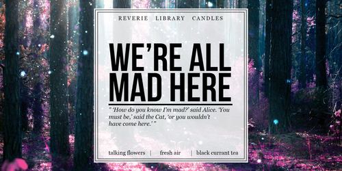 We're All Mad Here ~ Alice in Wonderland ~ Soy Candle for Bibliophiles