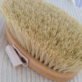 Bristles of natural wooden pet brushes