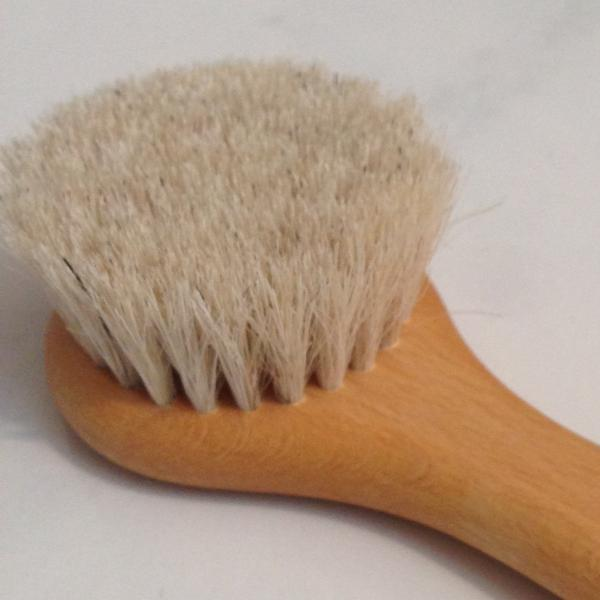 head of face and body brush showing details of bristles