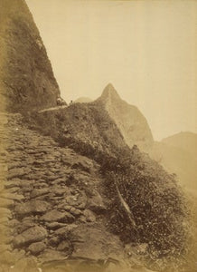 18990-pali-road-395_1264_detail