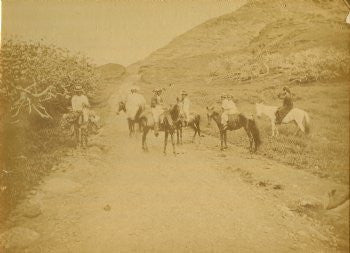 18996-pali-road-595_1051_detail