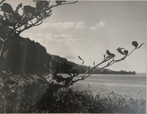 1950's Silver Print Photograph Of Kahana Bay Hawaii