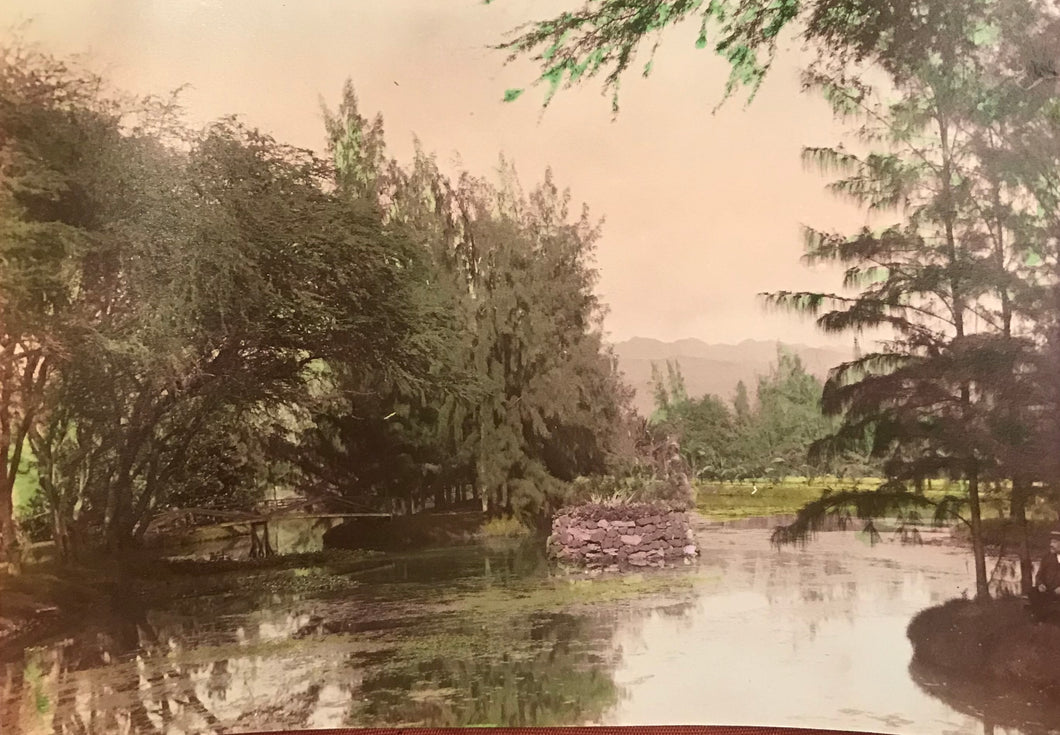 Vintage Hand Colored Photograph of Oahu, Hawaii