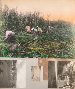 1890's Vintage Albumen Photographs Of Volcano And Hawaii Scenes