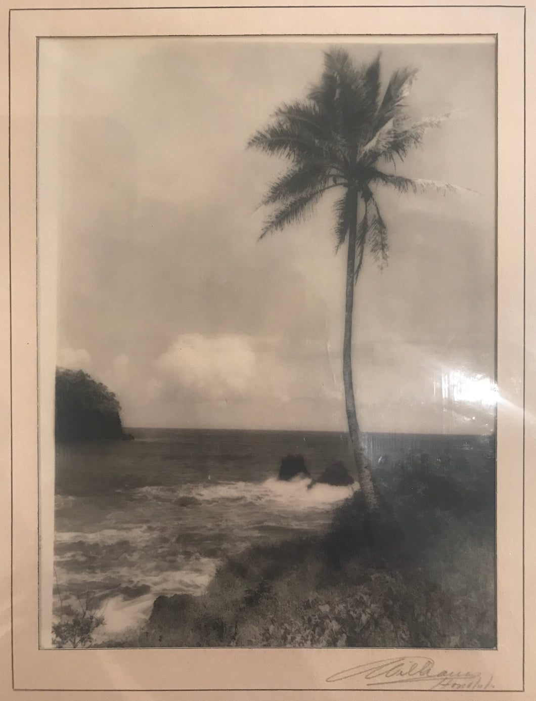 1920's Vintage Silver Print Photograph By Williams Of Honolulu