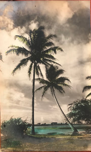 1910 Vintage Tinted Photograph By Gurrey Of Honolulu Hawaii