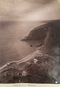 Rare 1880's Vintage Albumen Photograph Of Hawaii Coastline Oahu
