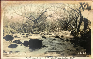 1920's Hand Colored Real Photo Post Card Of Nuuanu Valley Stream Honolulu Hawaii