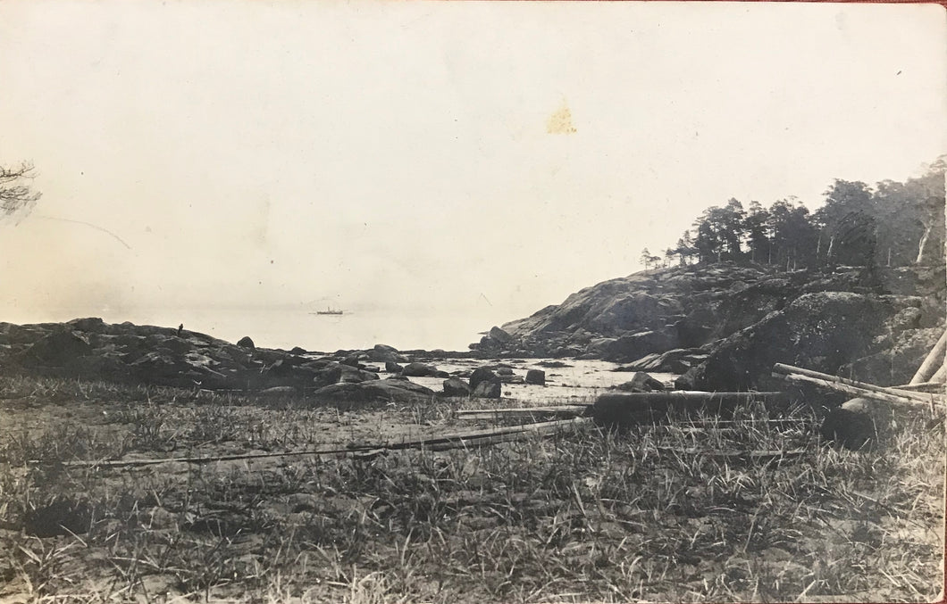 1920's Vintage Real Photo Post Card The Hamakua Coastline, Hawaii