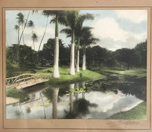 1920's Vintage Hand Colored Photograph By Williams Of Honolulu, Hawaii Park