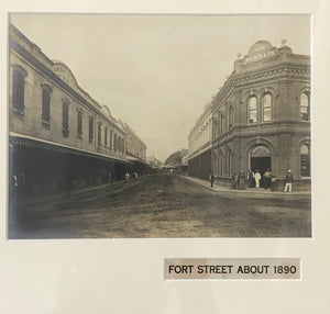 1890s Vintage Photograph Of Fort Street Honolulu Hawaii