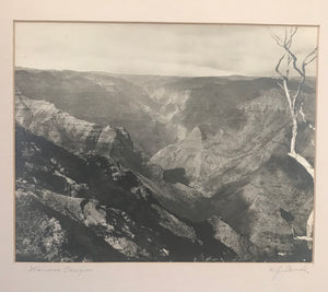 1920's Signed Vintage Photograph By W.J. Sands of Waimea Canyon