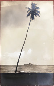 1920's Real Photo Post Card Of Palm Tree & Ship Honolulu Hawaii