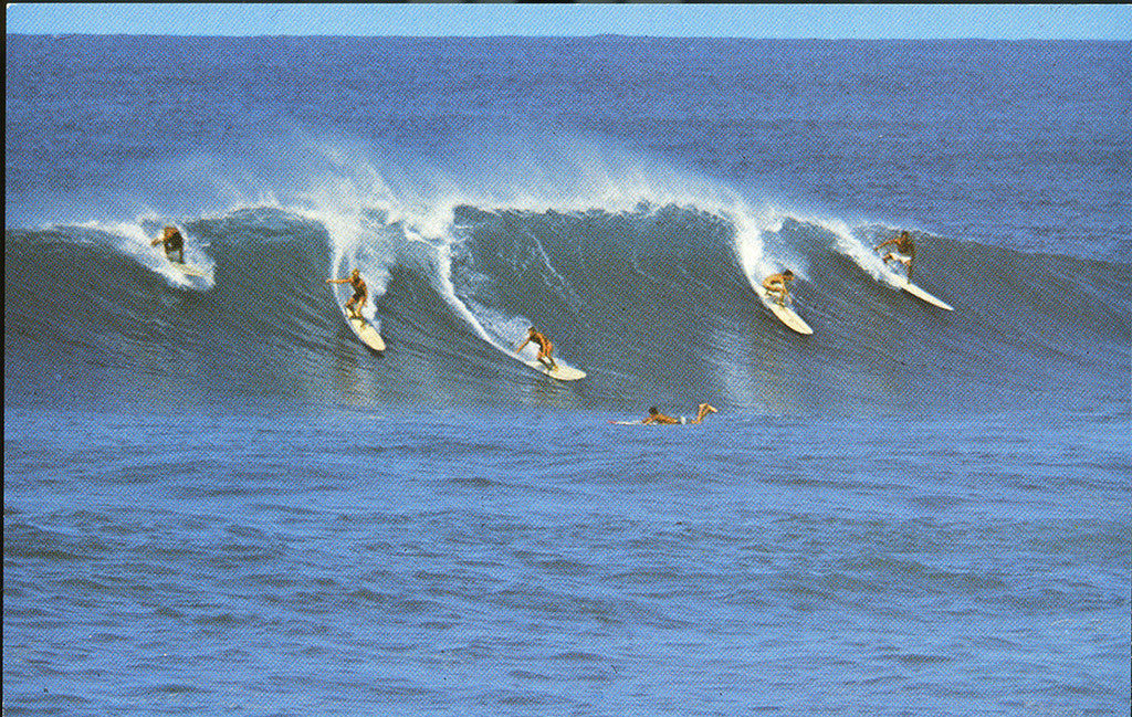 Surfing postcard062