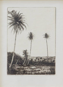 coulter_cocopalms_282_detail