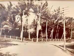 Nuuanu Avenue   Albumen Photo c.1890