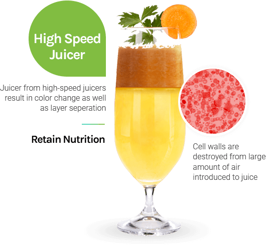 High Speed Juicer