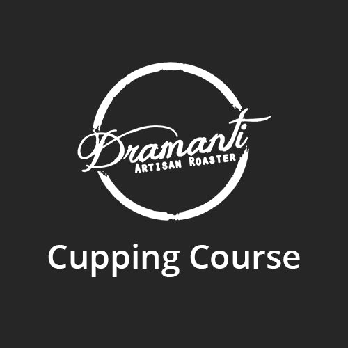 Dramanti HQ Cupping Session