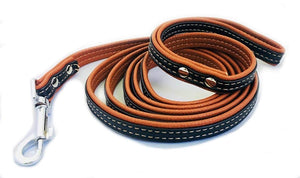 PU-Leather Dog Leash for Medium and Small Pets (Brown/Black) - HPZ™ PET ROVER