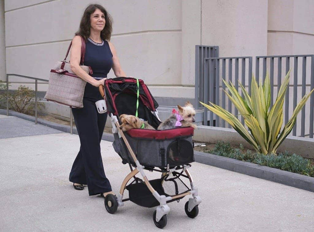 HPZ™ PET ROVER LITE Premium Light Travel Stroller for Small/Medium Dogs, Cats and Pets (Ruby Red) - HPZ Pet Rover USA