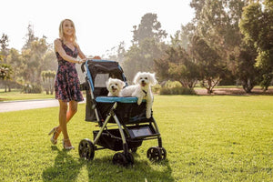 HPZ™ PET ROVER Premium Stroller for Small/Medium/Large Dogs, Cats and Pets (Sky Blue) - HPZ Pet Rover USA