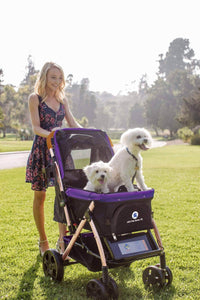 PET ROVER™ XL Extra-Long Premium Stroller for Small/Medium/Large Dogs, Cats and Pets (Purple) - HPZ Pet Rover USA