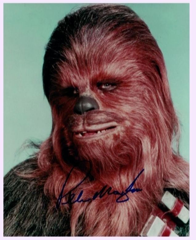200333 - Peter  Mayhew as Chewbacca Mounted Colour Photo Personally Signed - Treasure TV
