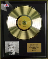 200494 - Madonna Framed & Mounted Gold Disc Ltd Edition of 50 only - Treasure TV