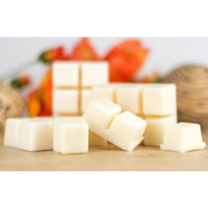 6 Cavity Coconut and Vanilla Wax Melts - Prince of Candles