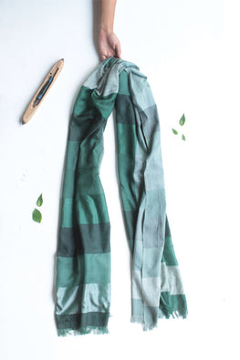 Khadi cotton, mulberry silk Azo free dyed stole-2-shaft weave-style 1123
