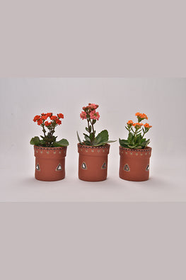 Antarang- Terracota Traditional Planters (Set of 3)