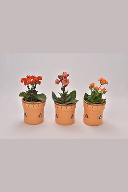 Antarang- Terracota Peach Planters (Set of 3)