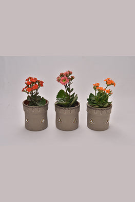 Antarang- Terracota Classic Grey Planters (Set of 3)
