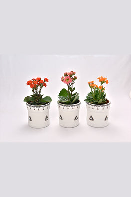 Antarang- Terracota White Planters (Set of 3)