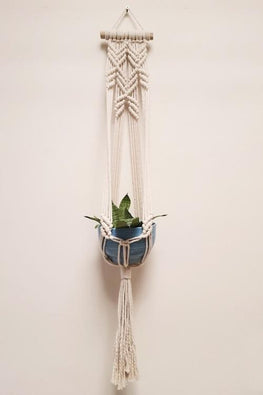 Blooming Flower Plant-Hanger