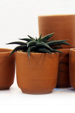 Craftlipi Small Terracotta Planters Set Of 5