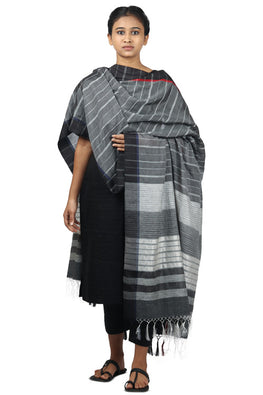 Mulberry silk, handspun cotton Azo free dyed dupatta-2-shaft weave-style 869
