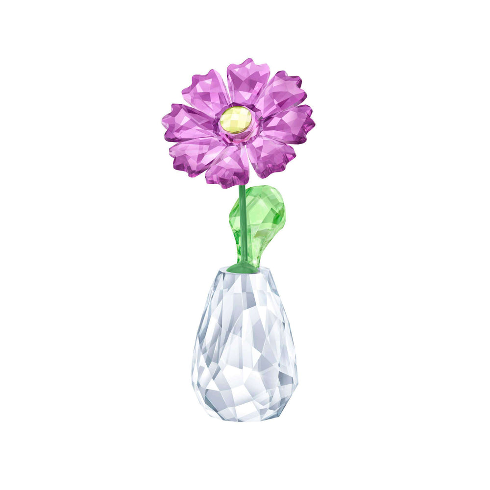 Swarovski Flower Dreams - Gerbera