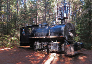 A shunting engine for logging in Algonquin Provincial Park, built in Montreal in 1910.