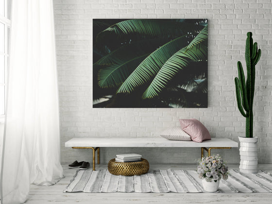 botanical photography, botanical art, dark green, canvas gallery wrap, large wall art, tropical decor, beach house, minimalist green, black