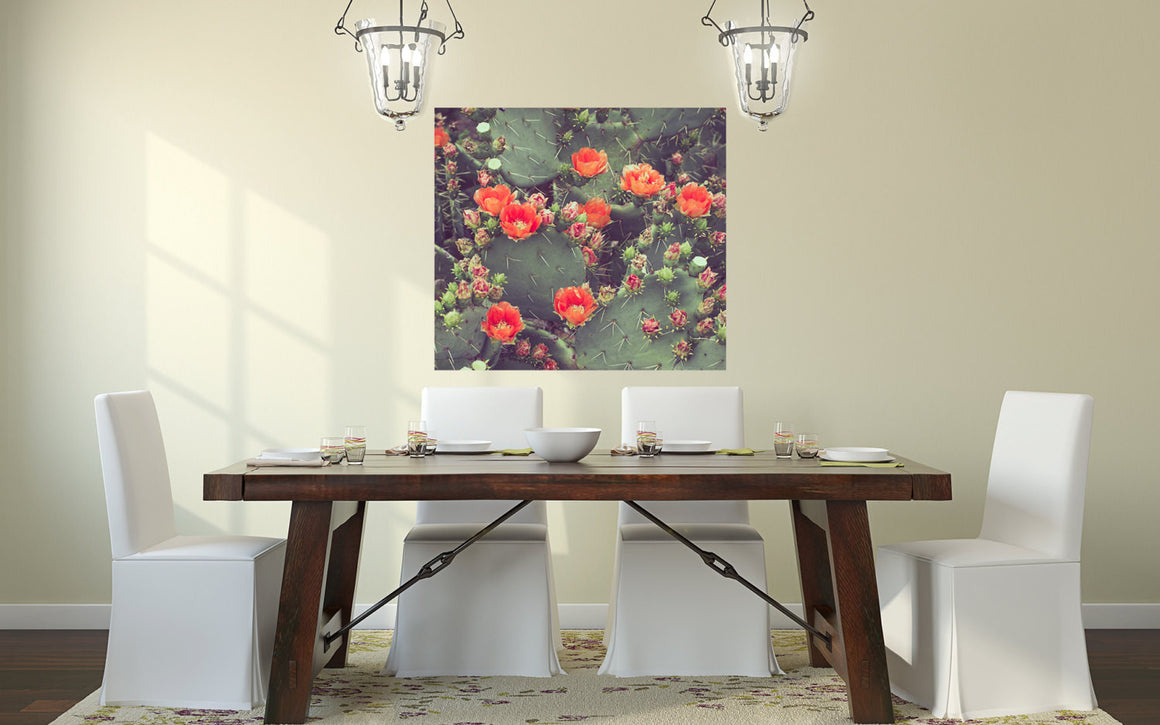 Texas photography, cactus photography, prickly pear, orange decor, vintage retro landscape southwest print bold western decor, canvas wrap